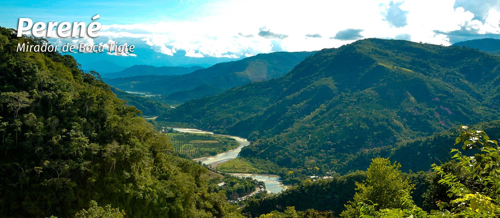 Selva Central del Perú